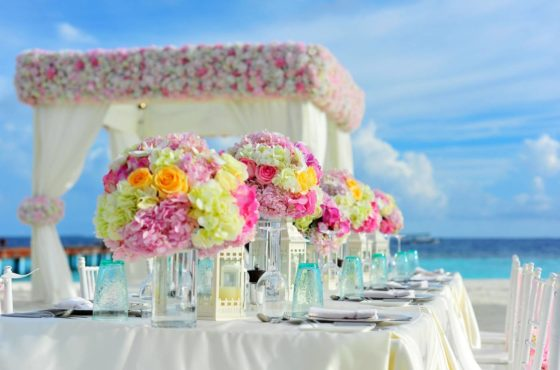 yellow-and-pink-petaled-flowers-on-table-near-ocean-under