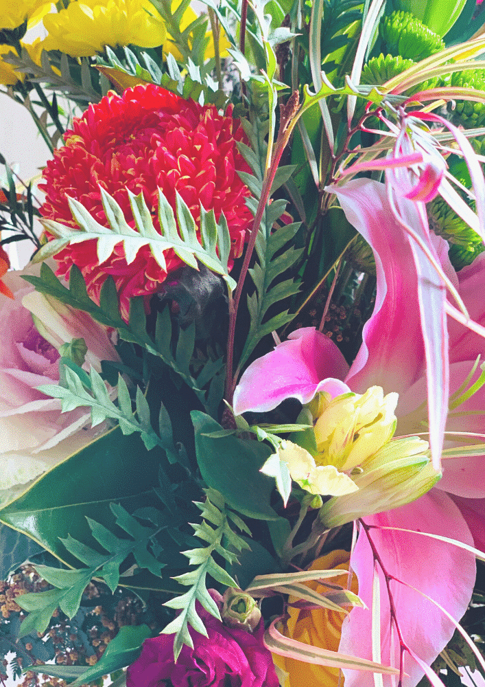 hello freshness close up bouquet