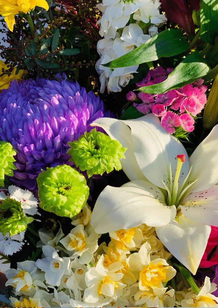 Lachaume bouquet close up
