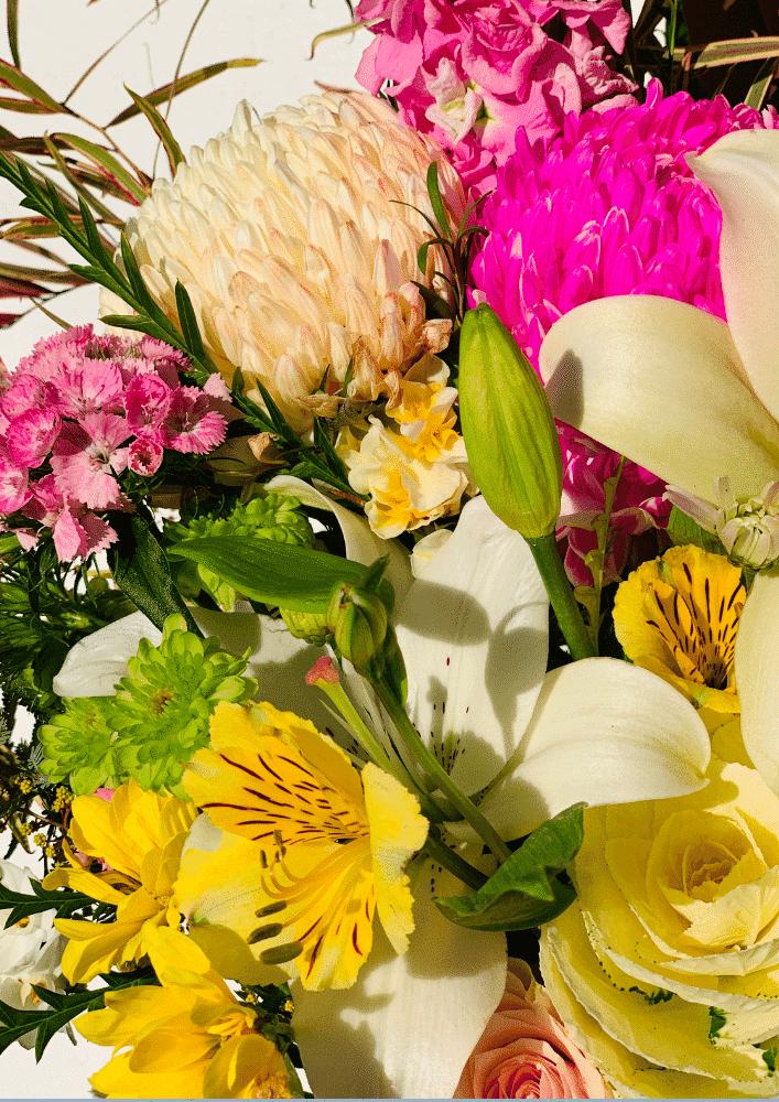 bouquet of luck close up (colourful flower arrangment)