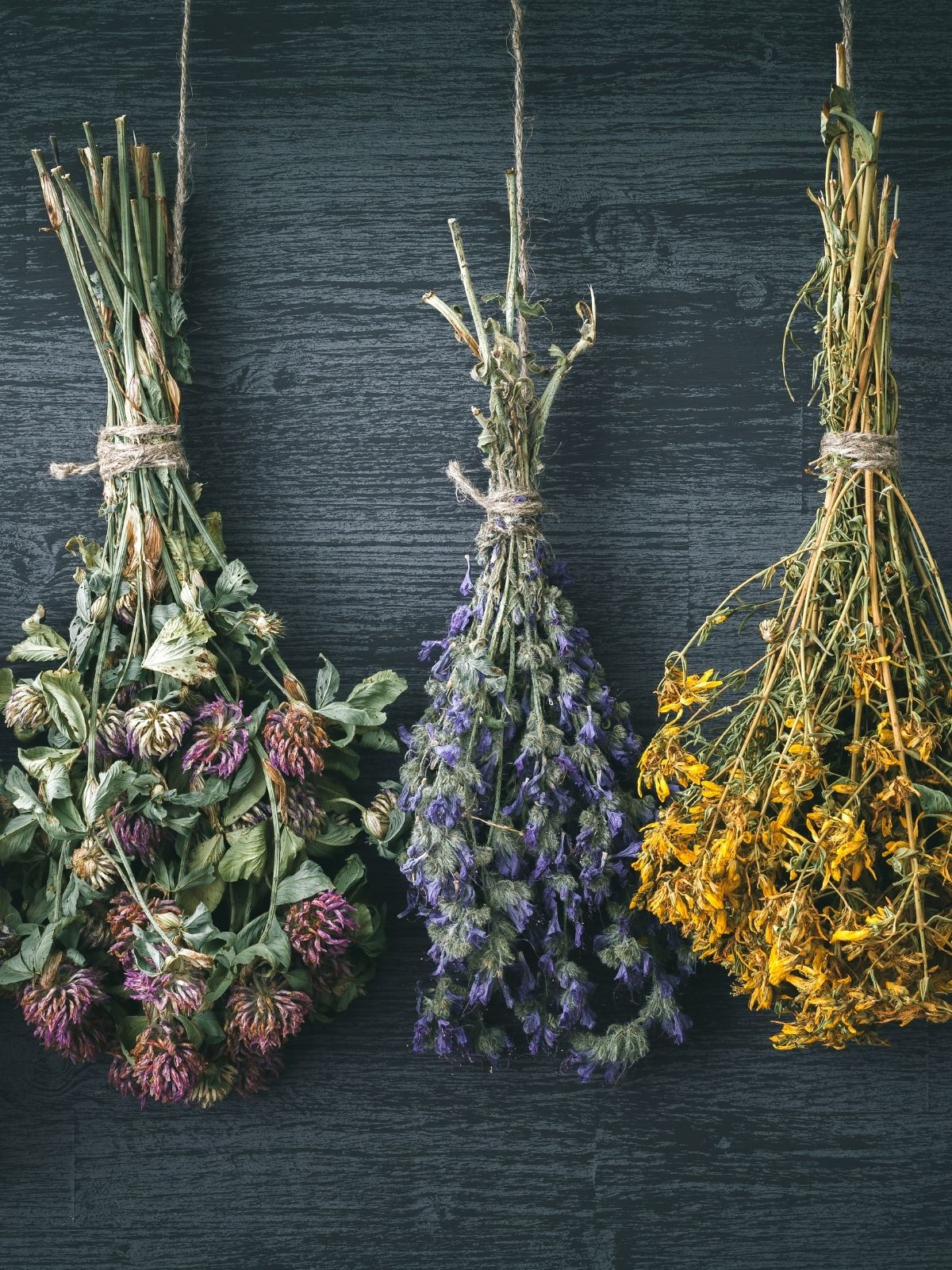 5 Benefits Of Dried Flowers